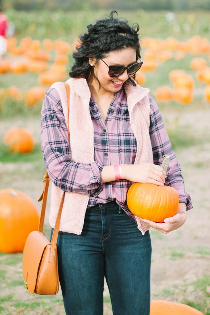The Best Pumpkin Patch Near Chicago