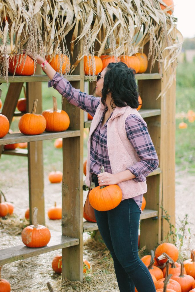 Why County Line Orchard is the best place to go to for Fall activities for the entire family.