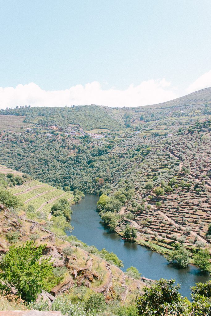 Douro Valley - Travel Guide to Porto, Portugal. Things to do in Porto, Portugal.